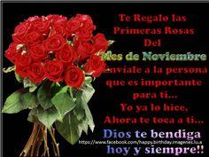 Te regalo la Primera rosa del Mes de #Noviembre