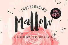 Mallow Typeface & EXTRA Mockup by maghrib on Envato Elements Font Packs, Brush Script, Brush Lettering, Hand Lettering, Design Typography, Photoshop, Packaging, Texture Vector, All Fonts