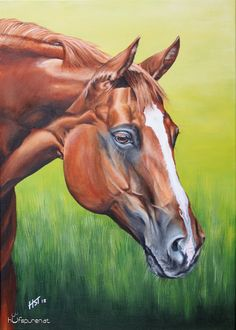 "Pferdegemälde ""Sweet Coosalina"", Acryl auf Leinwand, 70x50, 2015, Pferdemalerei von Hanna Stemke, www.hufspuren.com"