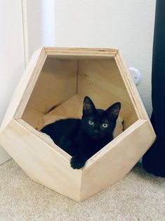 This item is unavailable - Geometric Cat House Dodecahedron Pet Abode LA/OC Area Animal Projects, Wood Projects, Geometric Cat, Cat House Diy, Kitty House, Wood Stain Colors, Pet Furniture, Cardboard Furniture, House Furniture