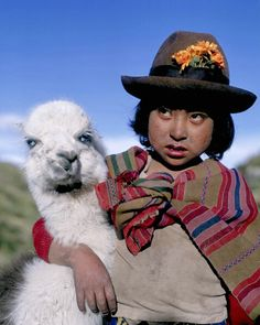 Boy and llama, Andes Mountains, Peru   Yes I know its not an alpaca but a llama will count.. this time.
