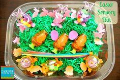Frogs & Snails & Puppy Dog Tails (FSPDT): Easter Sensory Bin