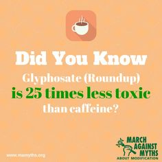 Roundup is 25 times less toxic than caffeine