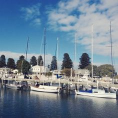Mornings in Port Fairy #australia #travel #portfairy #harbour #historic #camperlife #boats #wanderlust by frizzyhaych