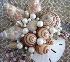 Sea shell deco