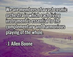 We are members of a vast cosmic orchestra in which each living instrument is essential to the complementary and harmonious playing of the whole.  - J. Allen Boone