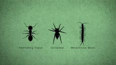 You thought four-legged animals walk weird?  Try adding a few more legs.  This animated video breaks down the multiple gaits in the insect world.    Directed and Animated: Stephen Cunnane  Music: Mark Hamrock    stephencunnane.com  (Stop on by!)