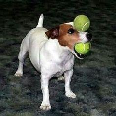 Ball balance!