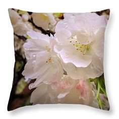 """white flowering dogwood trees and raindrops Throw Pillow 14"""" x 14"""" by Anna Porter"""