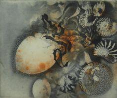 Jörg Schmeisser: Etchings Work In Australia, Etching Prints, Collagraph, Printmaking, Sea Shells, Mosaic, Gallery, Drawings, Illustration