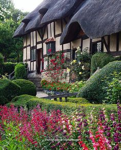 ANNE HATHAWAY'S COTTAGE | da David~Preston