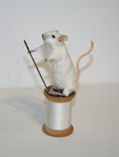Anthropomorphic Taxidermy Mouse by Studio sisu w/ by StudioSisu
