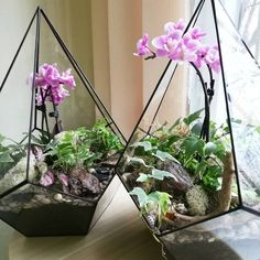 Teardrop Planter Glass Geometric Terrarium Container Handmade Glass Terrarium Geometric Home Decor Stained Glass Terrarium Gifts
