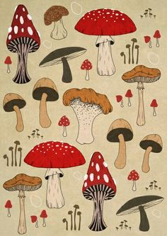 . Mushroom Paint, Mushroom Drawing, Trippy Mushrooms, Wow Art, Diy Frame, Canvas Prints, Art Prints, Botanical Illustration, Painting & Drawing