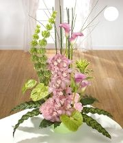 Sophistication. Make a statement with pink Orchids & Calla Lilies.