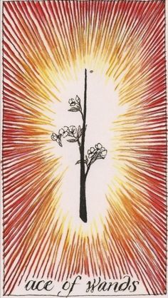 Ace of Wands - Tarot of the Wild Unknown