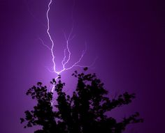 Purple Lightning by D.James | Darren J. Ryan