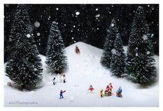 Winter Wonderland   Flickr - Photo Sharing!