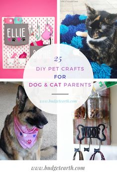 Looking for some adorable toys or beds for your favorite dog or cat? Check out these 25 DIY Pet Crafts for Dog & Cat Parents here! Dog Crafts, Animal Crafts, Diy Dog Toys, Animal Antics, Dog Rules, Diy Stuffed Animals, Dog Accessories, Big Dogs, Cute Baby Animals