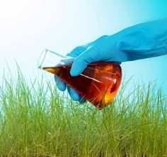 Research links Dementia to pesticides