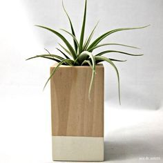 Oatmeal // Wood Colorblock Container Cube by seaandasters on Etsy, $24.00