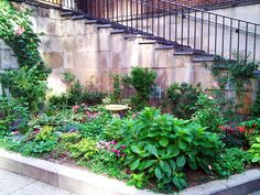Related Image | Garden | Pinterest | Garden Borders, Gardens And Raised Bed