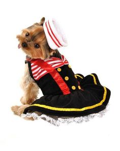 The Sweetheart Sailor Halloween Dog Costume is a sweet lace petticoat dog dress with sweetheart neckline, red suspenders, and a matching adjustable drawstring sailor's hat! This dress is pull-over sty Large Dog Costumes, Pet Costumes, Costume Ideas, Yorkshire Terrier Dog, Big Dogs, Cute Dogs, Adorable Puppies, Small Dogs, Sailor Halloween Costumes