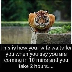 Married couples will relate . . #quotes #quote #quotestoliveby #love #quotestags #nofilter #inspiration #quoteoftheday #life #quotesoftheday #quotestagram #words #funny #inspire #instaquote #motivation #quotesaboutlifequotesandsayings #smile #tweegram #word #writer #loveit #lovequotes #reading #readit #realtalk #tagsta #truestory #tumblr #typography
