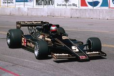 1978 Lotus dominates, with Mario Andretti and Ronnie Peterson finishing 1-2 in the championship