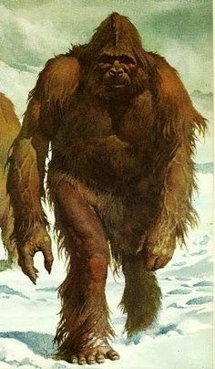 BigFoot Sightings from Around the Worls, Sasquatch, Yowi, Abonimable Snowman, All Sightings of Large Humanlike Creatures Yeti Pictures, Bigfoot Pictures, Yeti Bigfoot, Bigfoot Sasquatch, Bigfoot Toys, Fantasy Creatures, Mythical Creatures, Bigfoot Documentary, King Kong