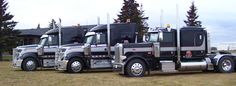 I have always been a fan of large vehicles. There are a lot of trucks capable of hauling heavy freight. When you have access to professional drivers and a lot of material you can make some serious cash.