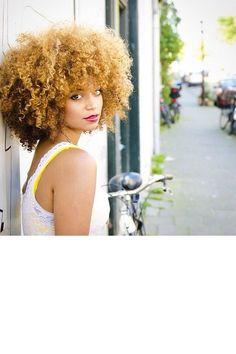 L'afro blonde                                                                                                                                                      Plus