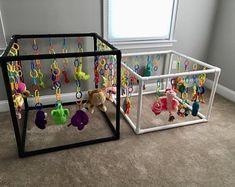 Content filed under the Dog Toys taxonomy. Whelping Puppies, Whelping Box, Toy Puppies, Puppies Puppies, Puppy Nursery, Puppy Room, Puppy Playground, Puppy Pens, Puppy Playpen