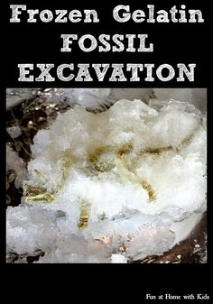 Frozen Gelatin Fossil Excavation and Frozen Gelatin Sensory Play A twist on the classic ice excavation, frozen gelatin is super COLD, a great sensory experience, and safe for babies and toddlers, too!  FUN AT HOME WITH KIDS