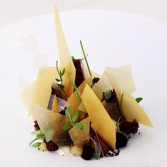 Bitter chocolate, pear, parsnip, cocoa, yogurt, crunchy mousse, eucalyptus, and fenugreek by chef Jordan Kahn of restaurant Red Medicine from LA #TheArtOfPlating