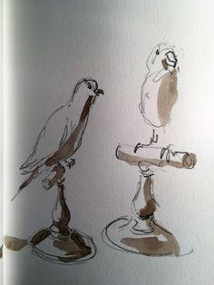 Aquarelle d'oiseaux Muséum de Nantes