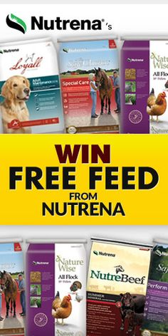 32 Best Nutrena images in 2017 | Horse feed, Meals, 3 pm