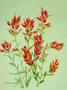 indian paintbrush tattoo