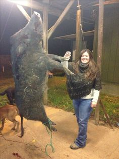 Louisiana boar hog 11-12-13 Hog hunting