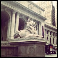 Just learned the two NYPL lions actually have names, Patience & Fortitude.