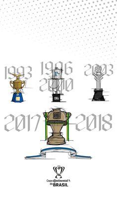 4a78d82c4b 90 melhores imagens de Cruzeiro E. C. em 2019