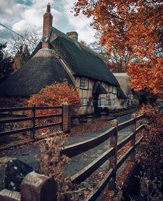 Autumn Scenes, Autumn Aesthetic, Autumn Cozy, Fall Winter, Sense Of Place, Fall Wallpaper, Autumn Photography, Best Seasons, Jolie Photo