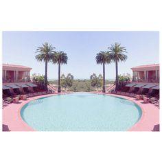 Pink Palms Pool