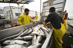 arctic fishermen - Google Search