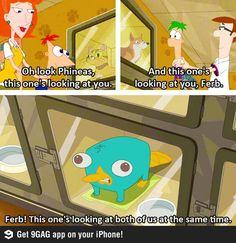 I ❤ Phineas and Ferb! look at baby Perry the Platypus Old Disney, Disney Love, Disney Magic, Disney Style, Disney And Dreamworks, Disney Pixar, Phineas Et Ferb, Perry The Platypus, Disney Shows
