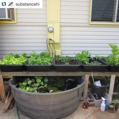 Repost shoutout to @substancehi!  #Diy #aquaponics is the best! Like if you agree!