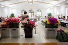 Floral Design School At The San Antonio Garden Center