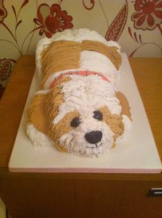 dog cake  Wow!  Somebody is good