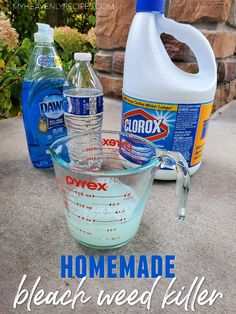 Homemade Weed Killer with Bleach-how to kill weeds in gardens with bleach. Recipe mixture to use. DIY