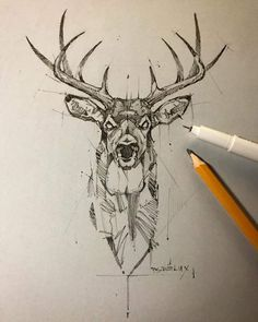 Stag Tattoo Design, Sketch Tattoo Design, Deer Tattoo, Dark Art Drawings, Cool Drawings, Tattoo Drawings, Drawing Sketches, Bild Tattoos, Neue Tattoos